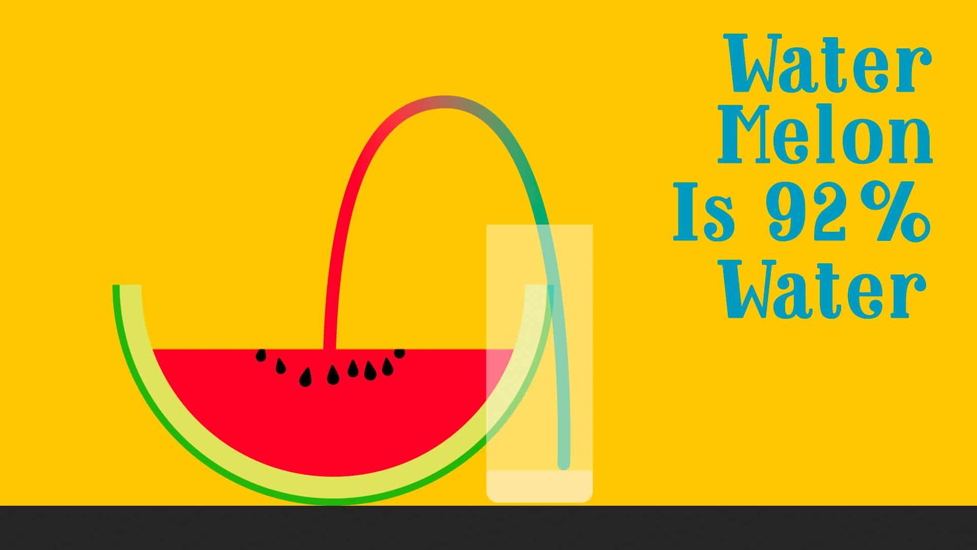 Animation Watermelon Styleframe